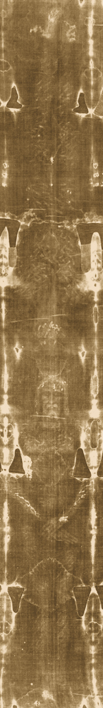 Image of the full length of the Shroud of Turin